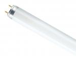 Лампа люминесцентная L 58 Вт 765 (54) G13 Osram